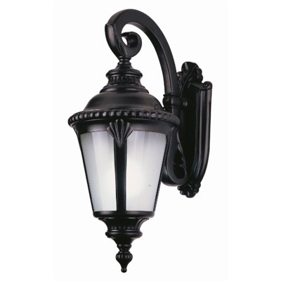 TransGlobe Lighting Outdoor Down Wall Lantern
