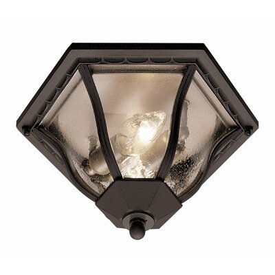 TransGlobe Lighting Outdoor  Flush Mount