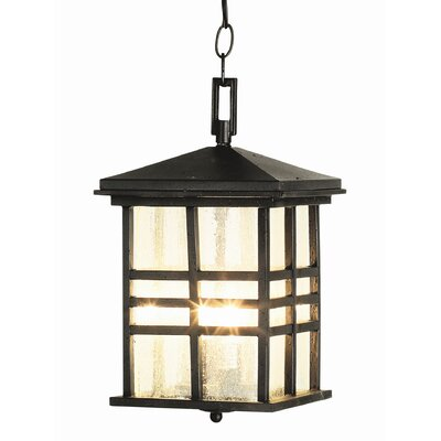 TransGlobe Lighting Outdoor 2 Light Hanging Lantern