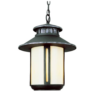 TransGlobe Lighting Outdoor 2 Light Hanging Lantern with Glass