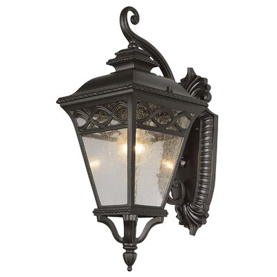 TransGlobe Lighting 1 Light Outdoor Small Down-Light Wall Lantern
