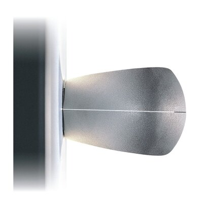 Zaneen Lighting Loop 1 Light Flush Mount/Wall Sconce
