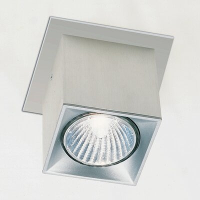Zaneen Lighting Dau Spot Flush Mount