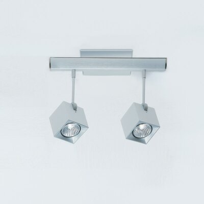 Zaneen Lighting Dau Spot Two Light Flush Mount