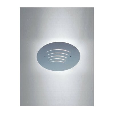 Zaneen Lighting Wall Oval Contemporary 1 Light Wall Sconce