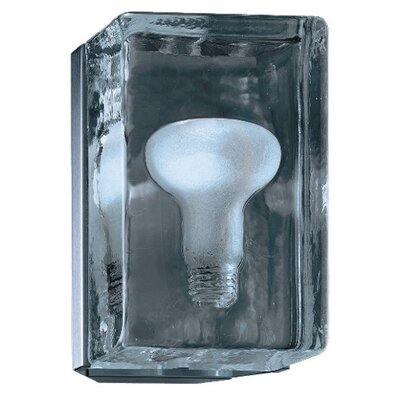 Zaneen Lighting Birne 1 Light Wall Sconce