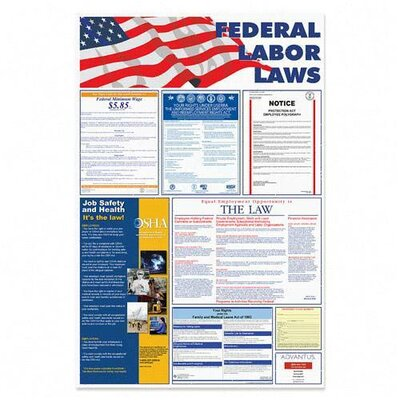"Advantus Corp. Federal Labor Law Poster, 24""x36"", Red/Blue/Black"