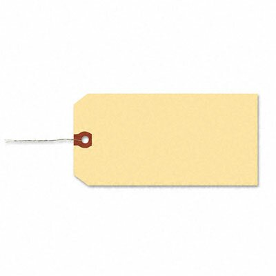 Avery Consumer Products Paper/Double Wire Shipping Tags, 5 1/4 X 2 5/8 (1,000/Box)