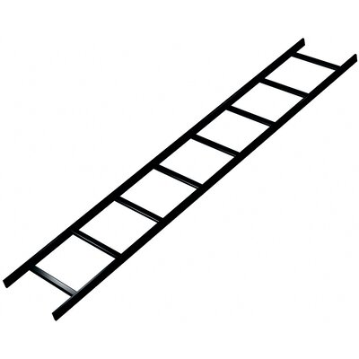 "Middle Atlantic CL Series 6' L x 12"" W Straight Ladder Section"