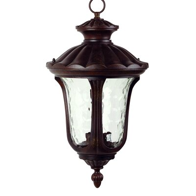 Yosemite Home Decor Tori 3 Light Outdoor Hanging Lantern