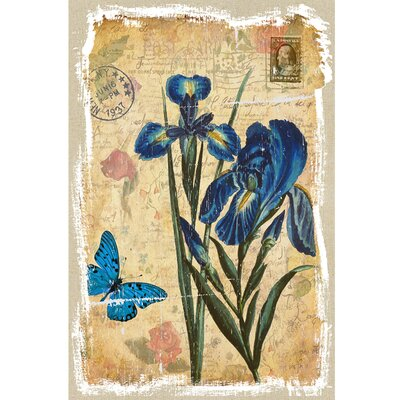 Revealed Artwork Iris Graphic Art on Canvas
