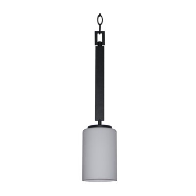 Panorama Trail 1 Light Mini Pendant