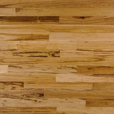 "Mannington Atlantis Prestige 5.16"" Tigerwood in Natural"