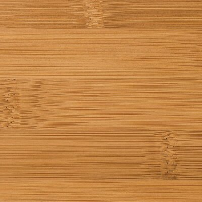 "Teragren Signature Naturals 3-5/8"" Horizontal Bamboo Flooring in Caramelized"