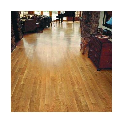 """Anderson Floors Jacks Creek 3-1/4"""" Solid White Oak Flooring in Natural"""