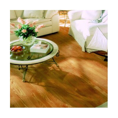 "Anderson Floors Jacks Creek 3-1/4"" Solid Red Oak Flooring in Natural"