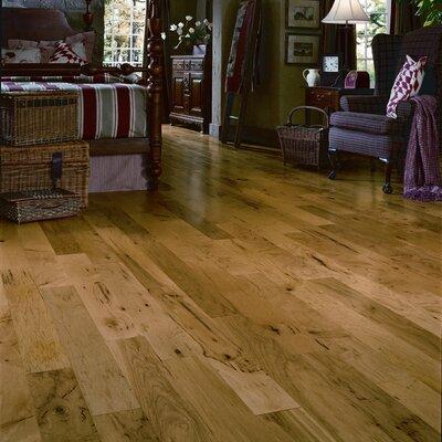 All Hardwood Flooring Wayfair