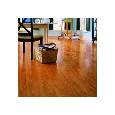 "Anderson Floors Jacks Creek 2-1/4"" Solid Red Oak Flooring in Butterscotch"
