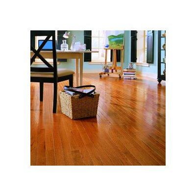 "Anderson Floors Jacks Creek 3-1/4"" Solid Red Oak Flooring in Butterscotch"