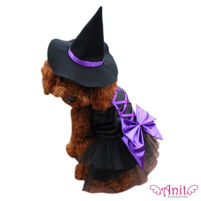 Witch Dog Costume