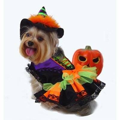 Puppe Love Halloween Witch Dog Costume