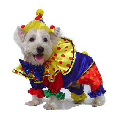 Puppe Love Shiny Clown Dog Costume