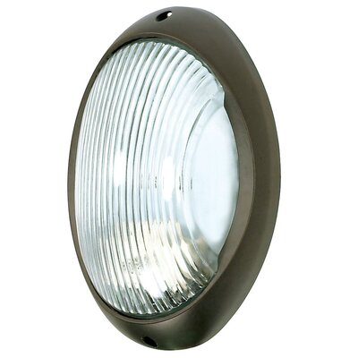 Nuvo Lighting Oval 1 Light Wall Sconce