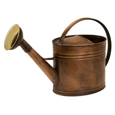 IMAX Tauba Large Oval Watering Can
