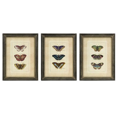 IMAX Butterfly Collection Wall Art (Set of Three)