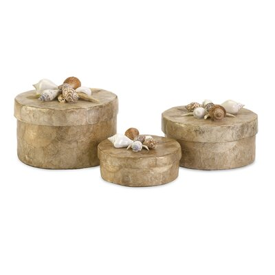 Sanibel Shell Boxes (Set of 3)