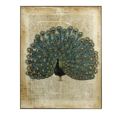 Peacock in Print Wall Decor