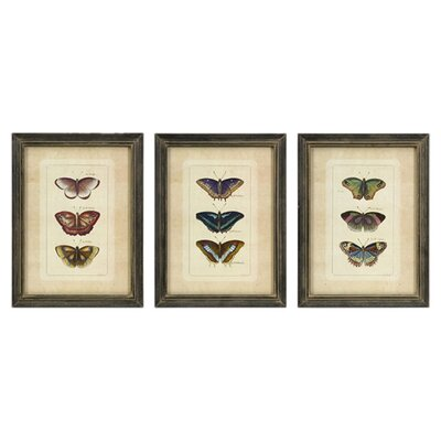 <strong>IMAX</strong> Butterfly Collection Wall Art (Set of 3)