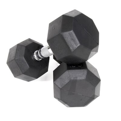 VTX by Troy Barbell 40 lbs  Rubber Encased Octagonal Dumbbells