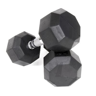 VTX by Troy Barbell 100 lbs Rubber Encased Octagonal Dumbbells