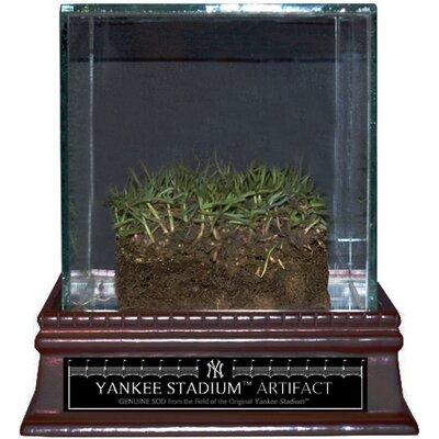 Steiner Sports Original Yankee Stadium Freeze-Dried Grass with Glass Display Case