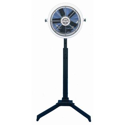 """SeaBreeze Electric 12"""" Floor Fan"""
