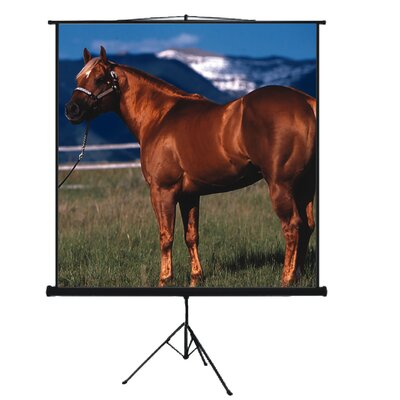 "Mustang 80"" Tripod Screen"