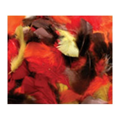 Chenille Kraft Company Assorted Quill Feathers Fall Color