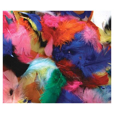 <strong>Chenille Kraft Company</strong> Feathers Hot Colors