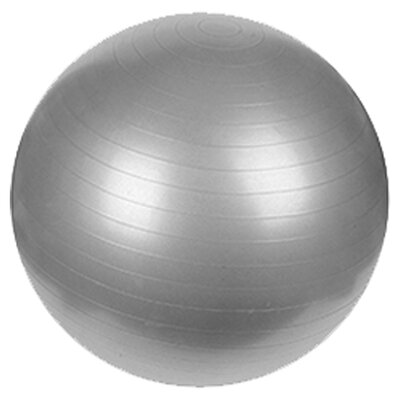 "Sunny Health & Fitness 25.59"" Anti-Burst Gym Ball"