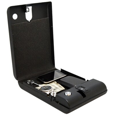 LockState Safecase Biometric Safe