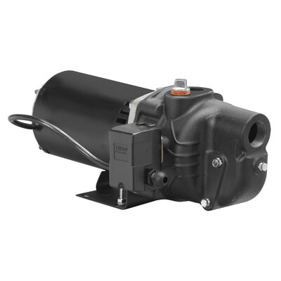 1/2 HP Cast-Iron Shallow Well Jet Pump