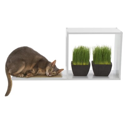 Designer Pet Products The Sophia Wall Mounted Cat Tree (Set of 2)