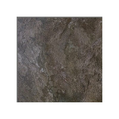 "Metroflor Solidity 30 Tahoe 16"" x 16"" Vinyl Tile in Homewood"