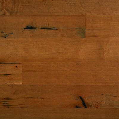 "Columbia Flooring Silverton 5"" Solid Hardwood Maple Flooring in Sundown"