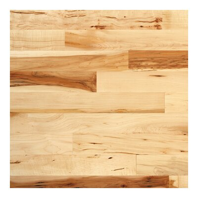 "Columbia Flooring Jefferson 3-1/4"" Solid Hardwood Maple in Natural"