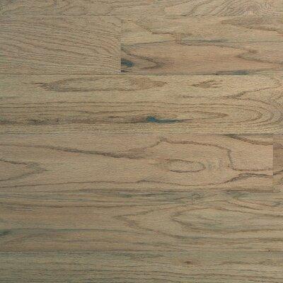 """Columbia Flooring Hatteras 5"""" Solid Hardwood Oak Flooring in Pelican"""