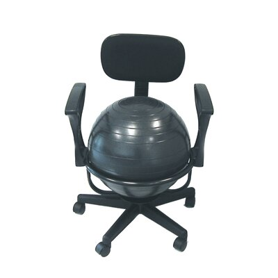 Isokinetics Balance Exercise Ball Chair Amp Reviews Wayfair