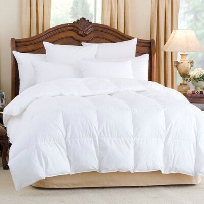 Andesia 650 Fill Power Goose Down Comforter