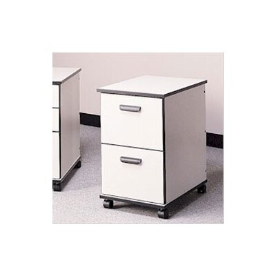 Fleetwood Solutions Two-Drawer Mobile File Cabinet